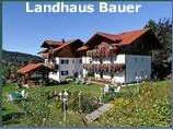 12-08-06_webcam_bauer.jpg
