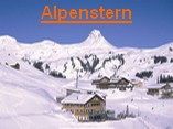 damuels:alpenstern_157.jpg