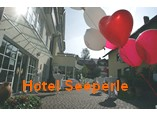 webcams:hotel_seeperle_langenargen.jpg